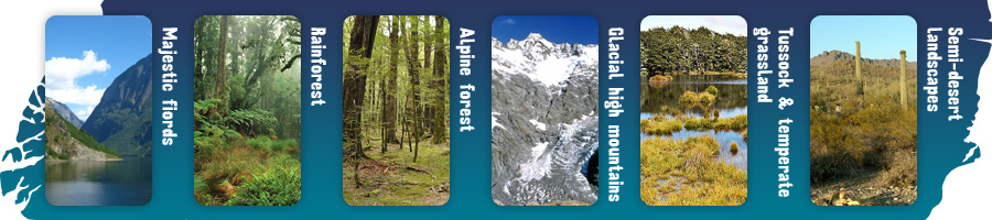 Semi-desert landscapes, Tussock & temperate grassland, Glacial high mountains, Alpine forest, Rainforest, Majestic fiords.